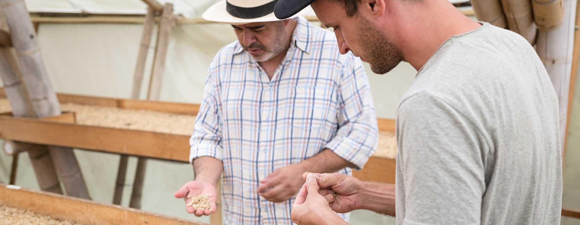 Direkthandel mit unseren kolumbianischen Kaffeebauern