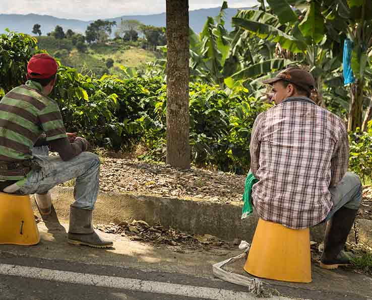 Unser Kaffee-Dokumentarfilm aus Kolumbien