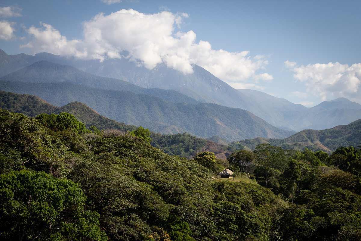 The Arhuaco: Kaffee und Kakao. CafCaf.de – Kaffee & Blog, Kaffeeblog