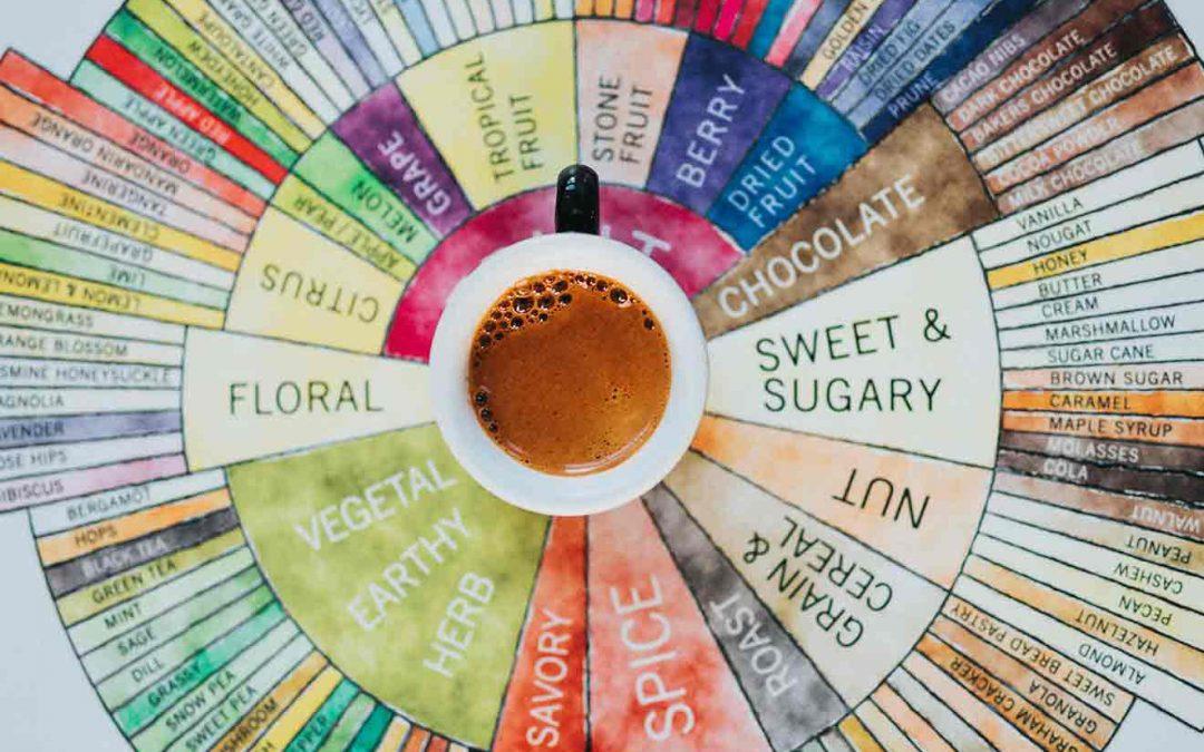Blend oder Single Origin – was schmeckt besser?