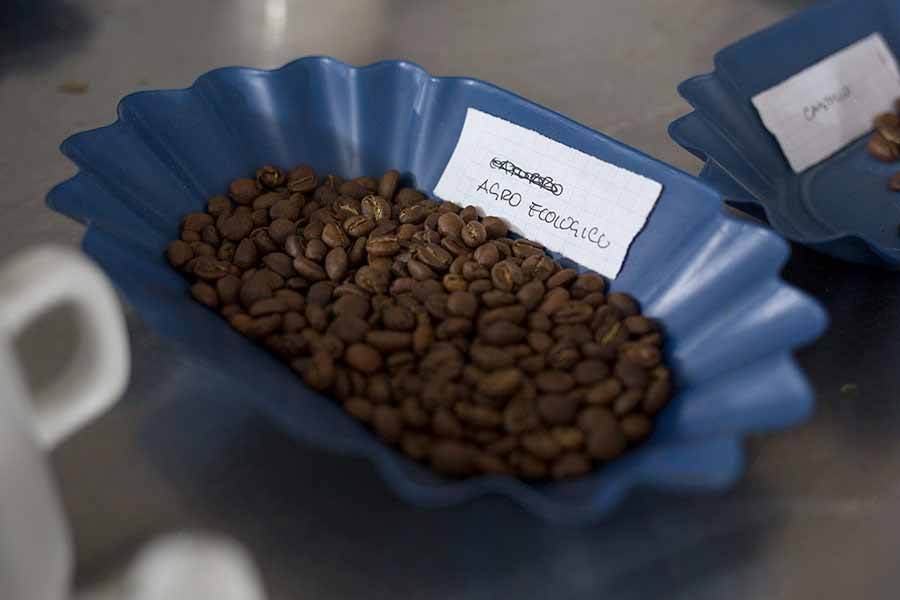 Coffee Cupping. CafCaf.de – Kaffee & Blog, Kaffeeblog