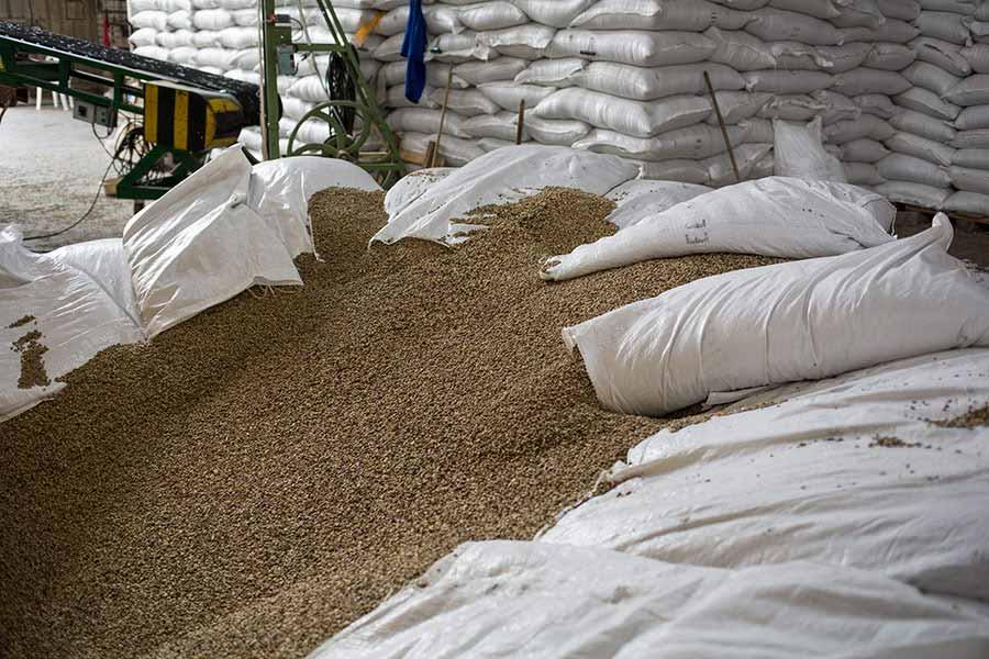 Kolumbianischer Kaffeehandel, Direktimport. CafCaf.de – Kaffee & Blog, Kaffeeblog