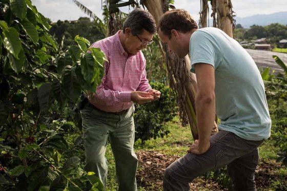 Was ist »Café de Colombia«? Eine Spurensuche