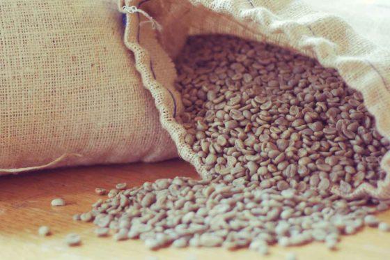 Wundermittel »grüner Kaffee«