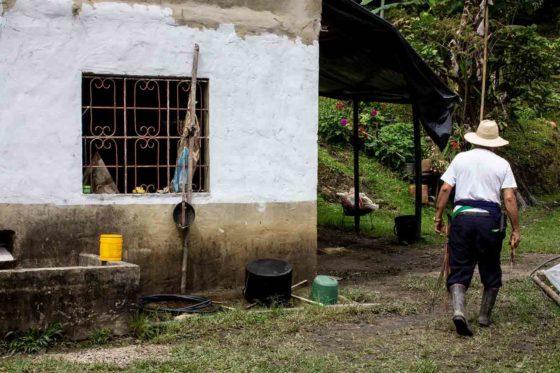 Südamerikas Kaffee-Kooperativen