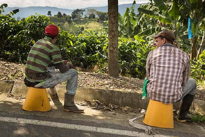 Kaffee aus Kolumbien: Dokumentarfilm