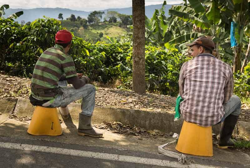 Unser Kolumbien Kaffee Dokumentarfilm