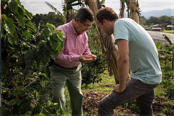 Direkthandel mit kolumbianischen Kaffeebauern