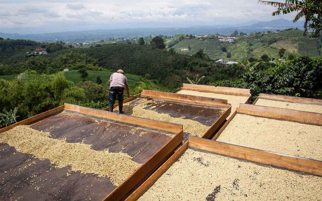 The Pledge: Mit Kaffee die Welt verbessern